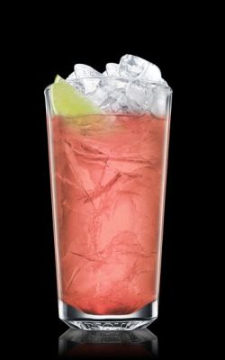 ©absolutdrinks.com